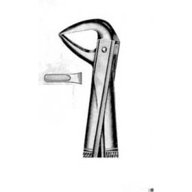 Replės chirurginės apatiniams centriniams dantims ir šaknims
